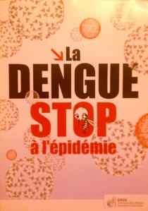 Dengue epidemic brochure