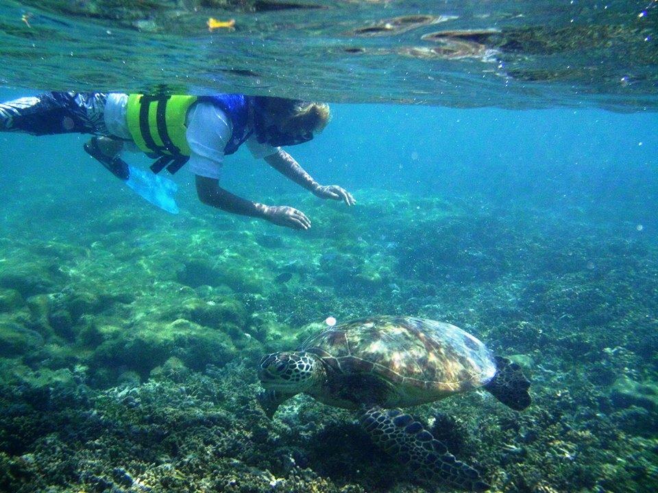 snorkeling new caledonia today